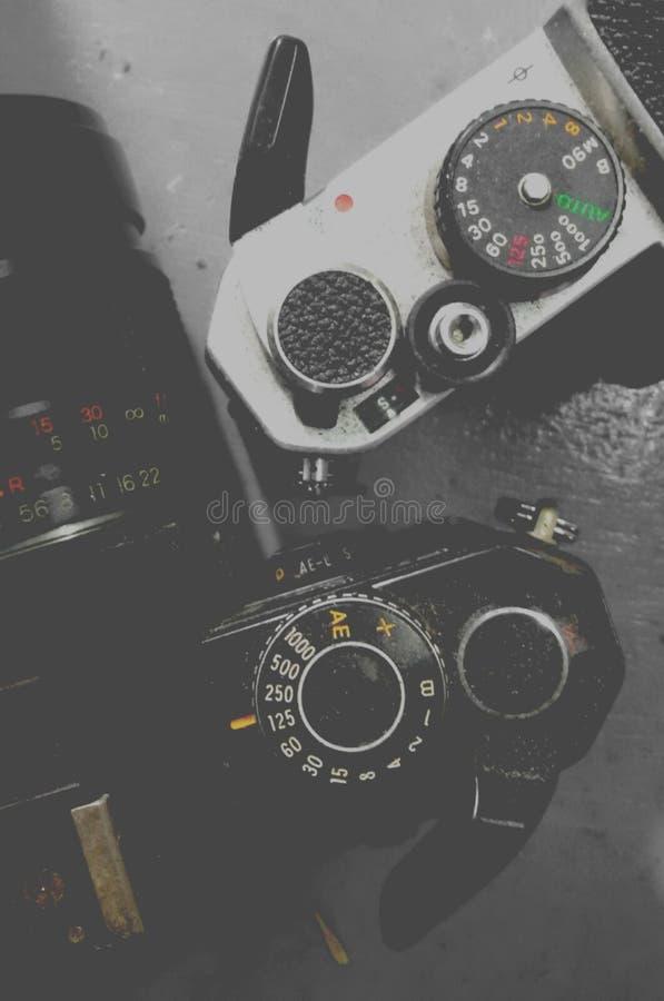 scale & leve fotografie stock libere da diritti