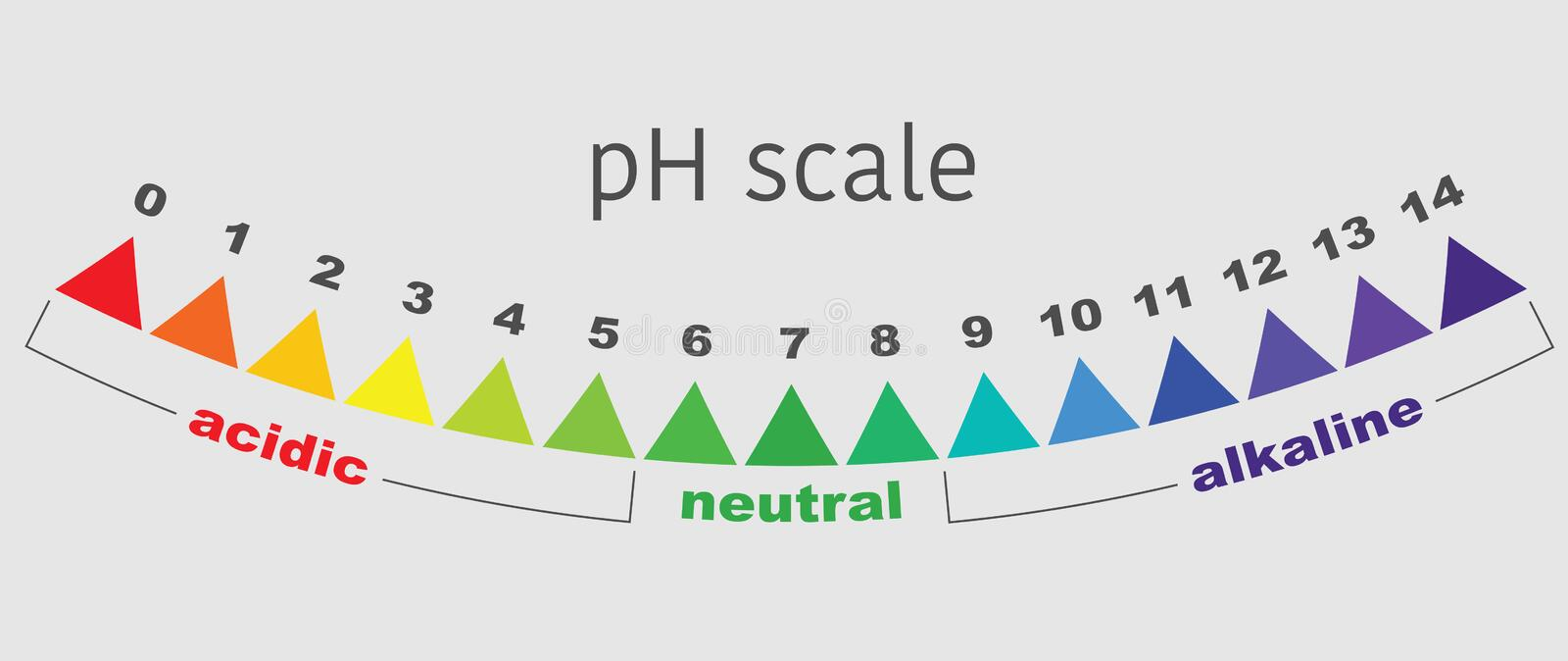 Scale of ph value for acid and alkaline solutions, vector isolated royalty free illustration