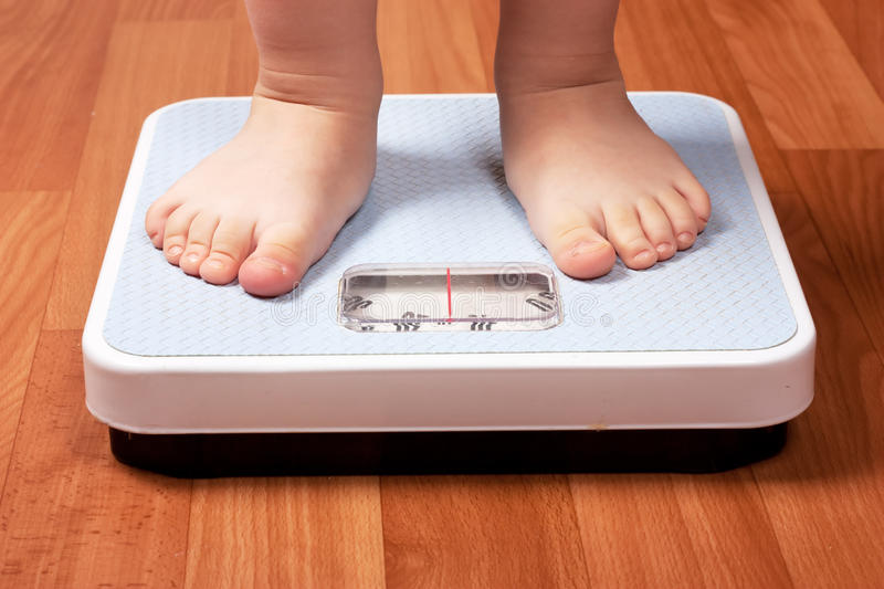 Scales royalty free stock photo