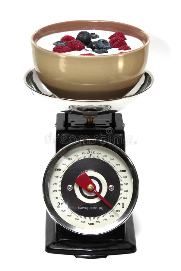 Download Scales stock image. Image of scales, life, closeup, orderly - 39501573