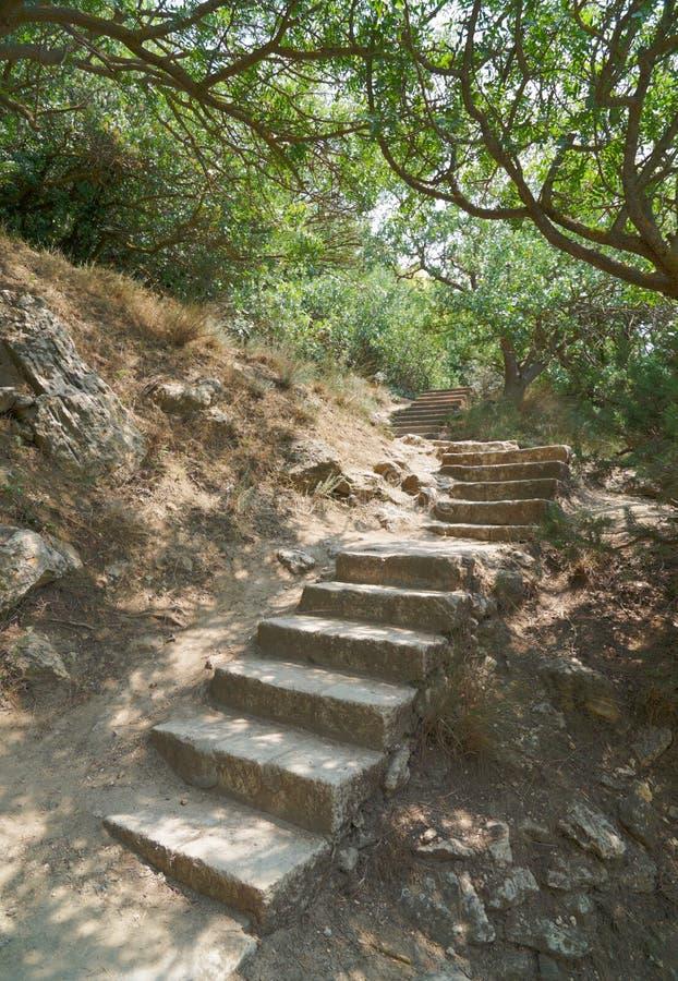 Scaletta di pietra antica fotografie stock