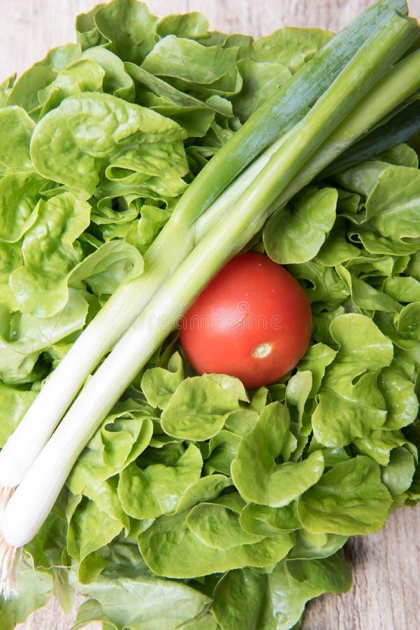 Scallions, tomatoe i zielona sałatka na drewnianym tle, fotografia royalty free