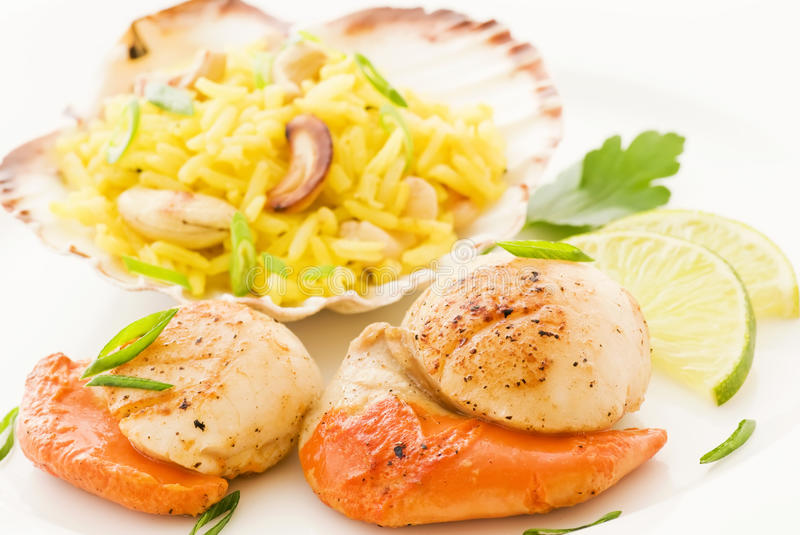 Download Scallop with rice stock image. Image of herb, curcuma - 17104015