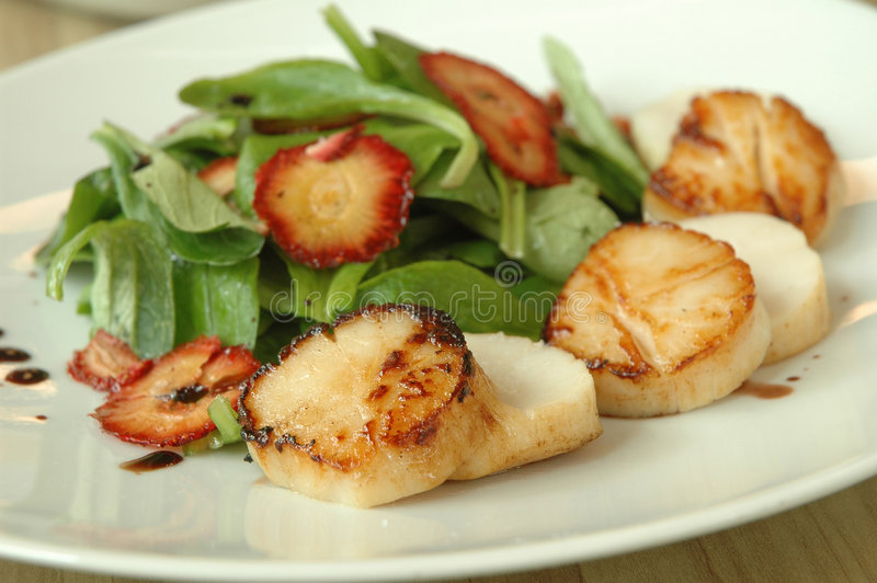 Scallop salad royalty free stock photography