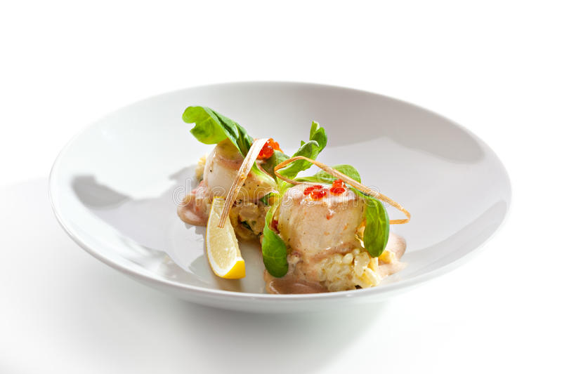Scallop. Sea Scallop with Risotto and Sauce stock images