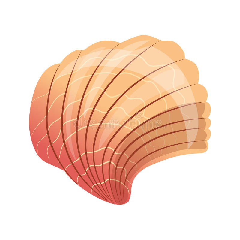Scallop seashell, an empty shell of a sea mollusk. Colorful cartoon illustration stock illustration