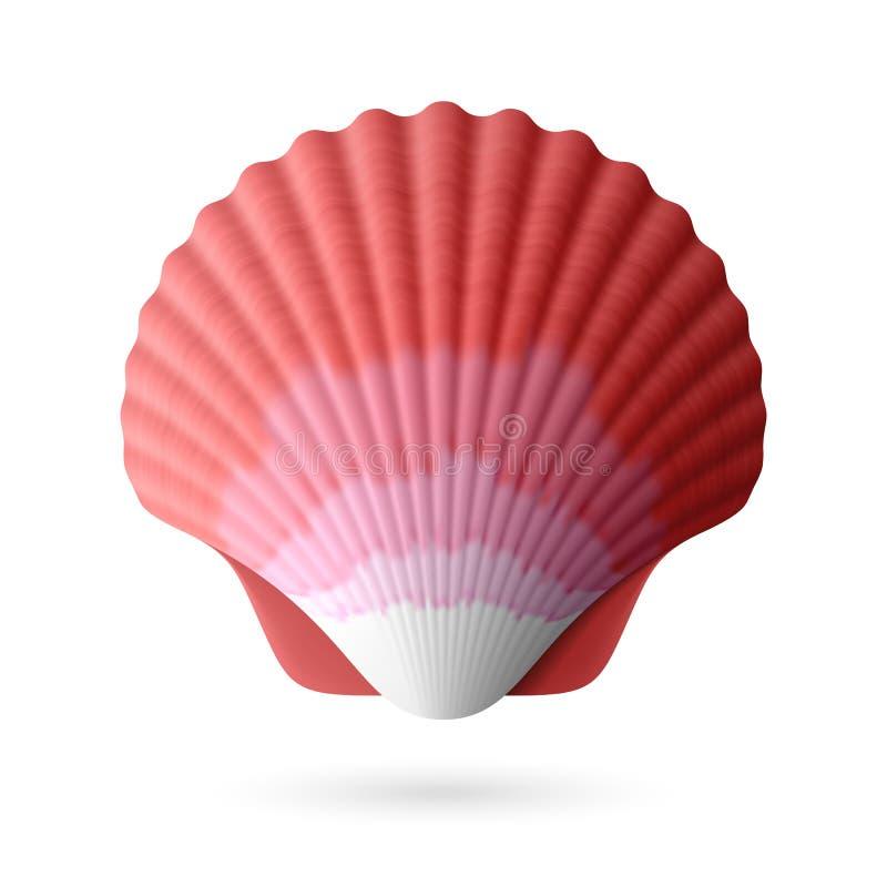 Download Scallop seashell stock vector. Image of single, ocean - 31982728