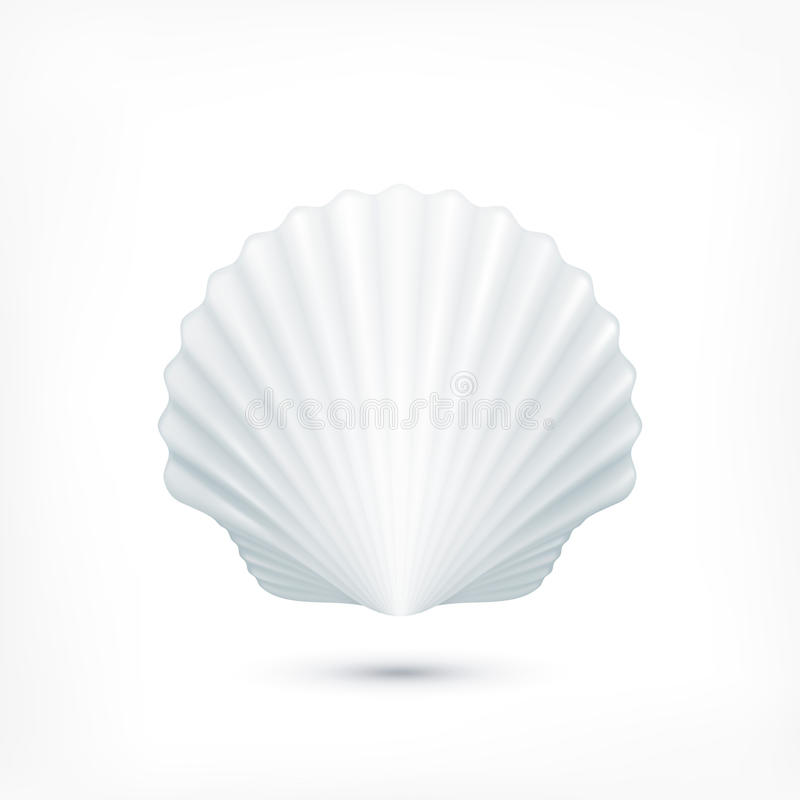 Free Scallop Seashell Of Mollusks Icon Sign Stock Photography - 61109312