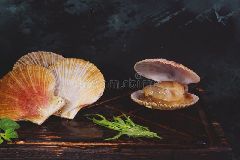 Scallops в раковинах лежат на доске, здоровой еде, полезной еде стоковые изображения