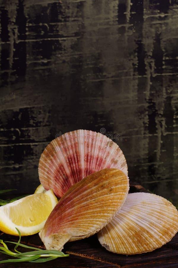 Scallops в раковинах лежат с лимоном и травами на темной доске перед варить стоковое фото