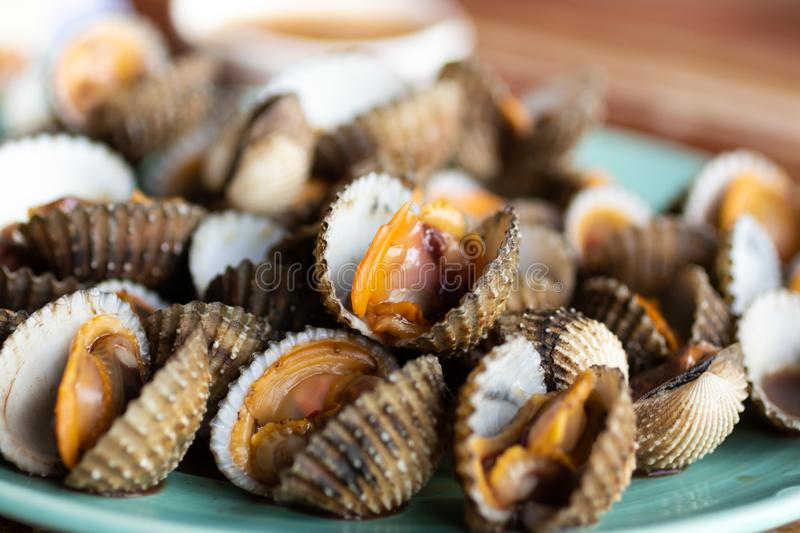 Scallops in the dish, food for everyone in the family stock photos
