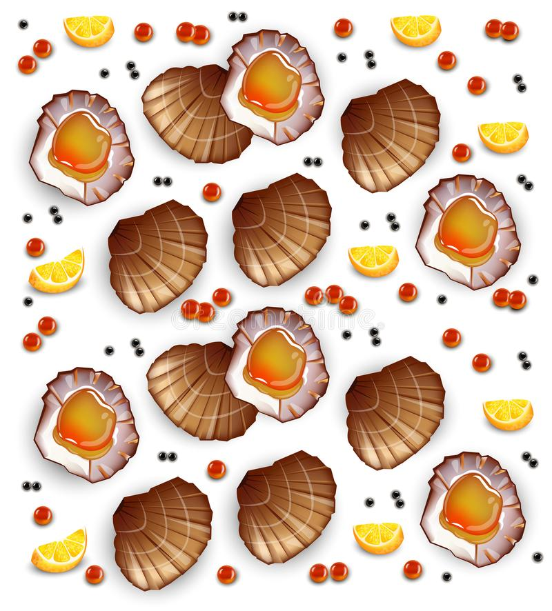 Scallops pattern Vector realistic seafood. Fresh shellfish. 3d detailed illustrations. Scallops pattern Vector realistic seafood. Fresh shellfish. 3d detailed vector illustration