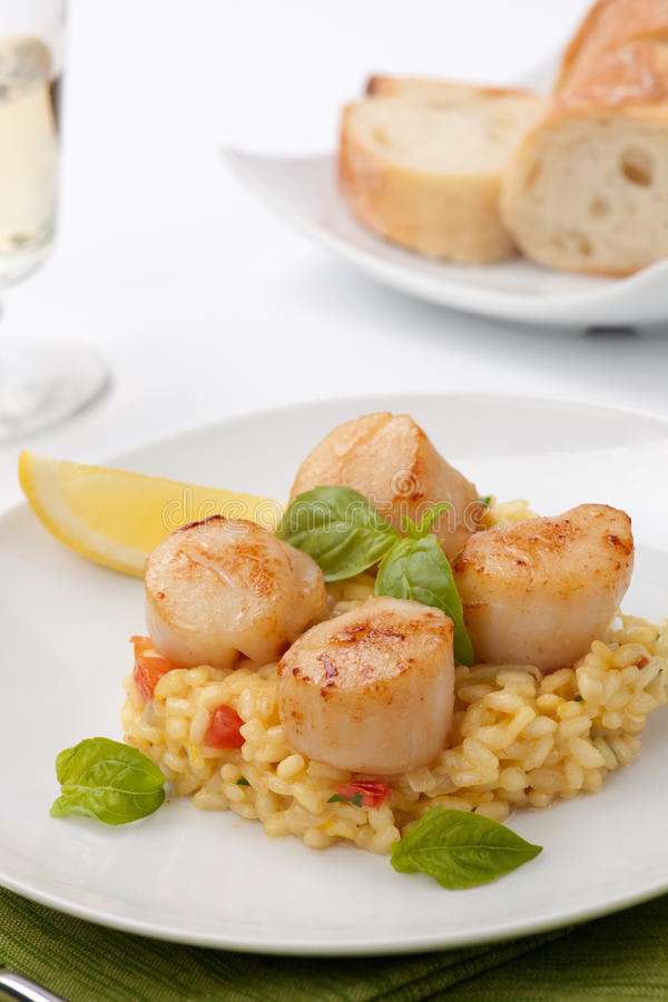 Scallops Risotto stock photography