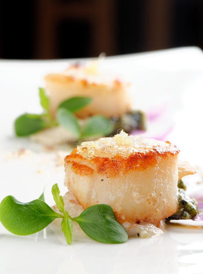 Scallops shells with thai basil pesto. On the plate royalty free stock images
