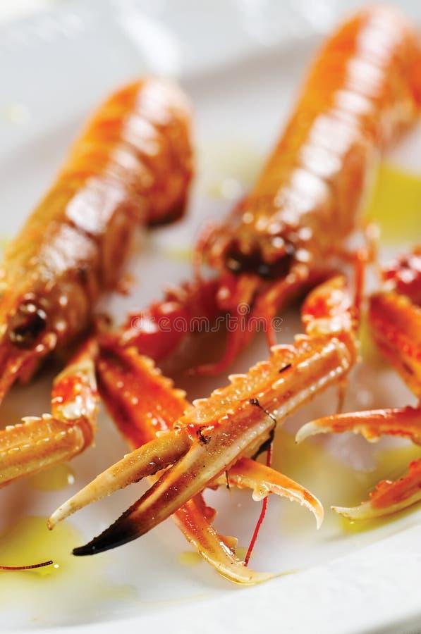 Download Scampi crabs stock photo. Image of shrimp, food, fresh - 11986908
