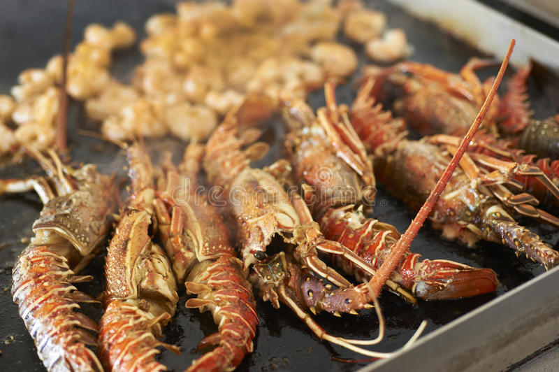 Download Scampi crabs stock photo. Image of nutrition, delicious - 26819574