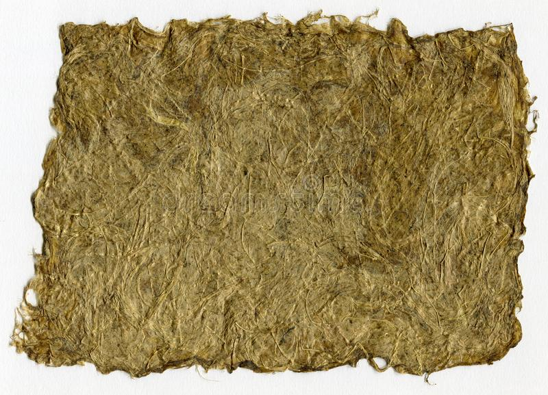 Scan of handmade herbal paper with dried grass texture royalty free stock images