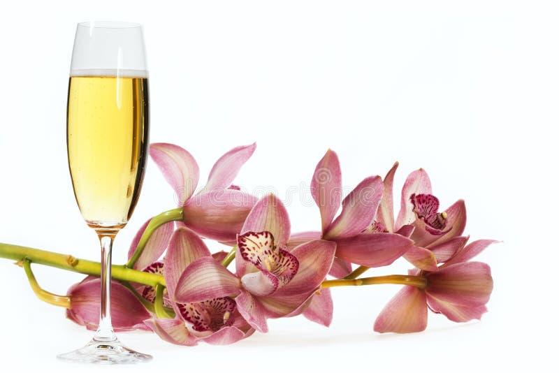 Scanalatura di Champagne fotografie stock