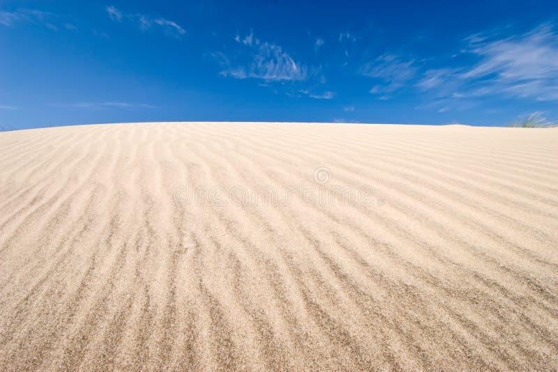 Scanalature sulla duna immagini stock