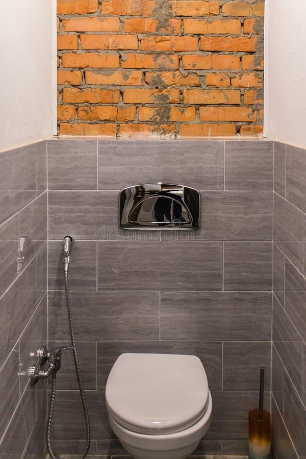 Scandagliando nella toilette immagine stock