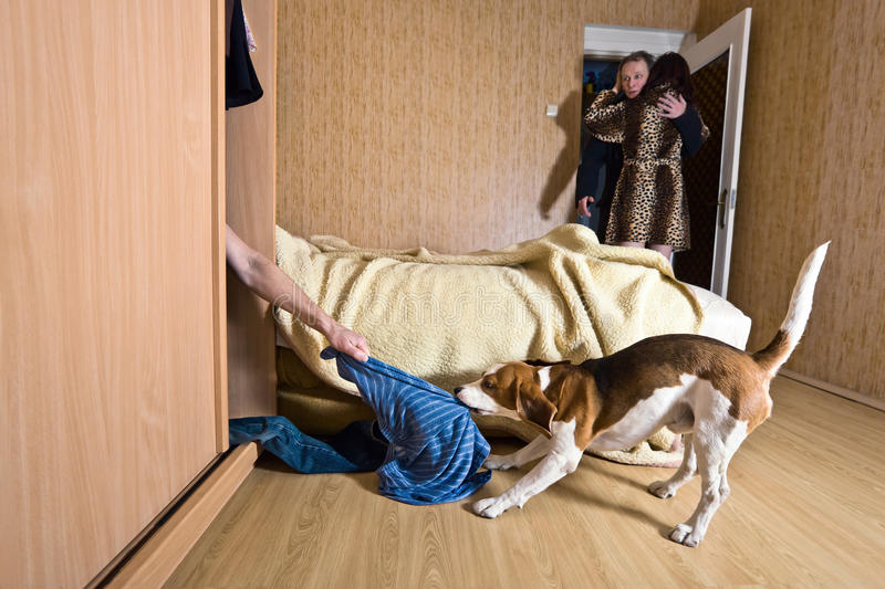 Scandal. The naked lover in a wardrobe stock photos