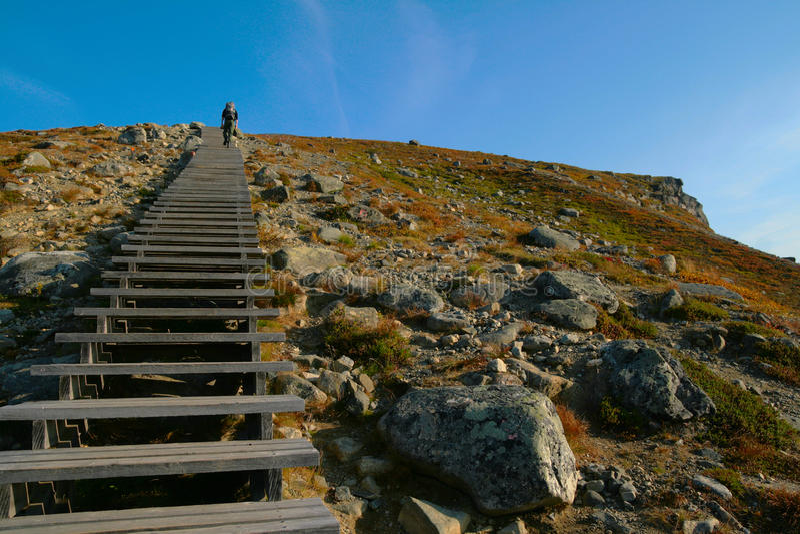 scandinavia fotografia stock libera da diritti