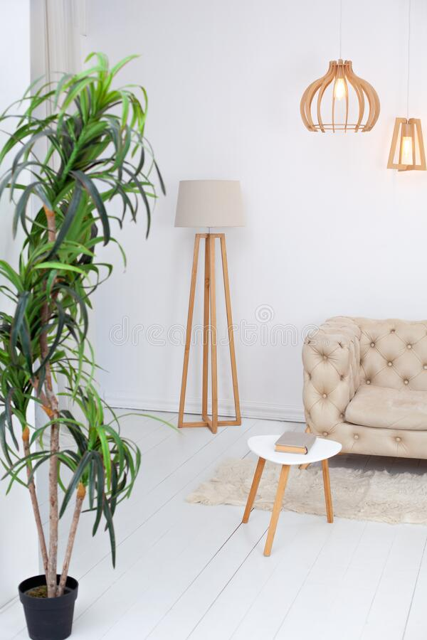 Free Scandinavian Interior Of Living Room Of A Modern Apartment With A Beige Sofa, A Designer Coffee Table, Plant And A Lamp. Home Deco Royalty Free Stock Photo - 168793715