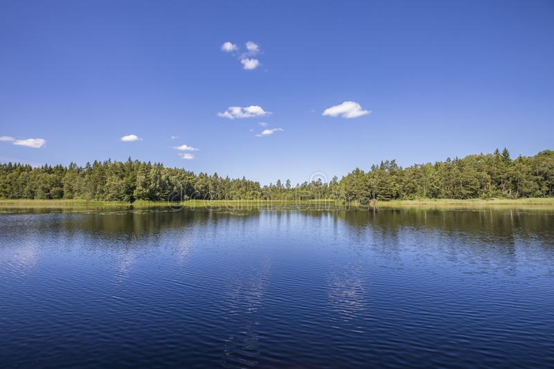 Scandinavian lake view. A calm lake on a sunny summers day. There are some white clouds in the blue sky, and the view shows a pine forest across the water on the royalty free stock images