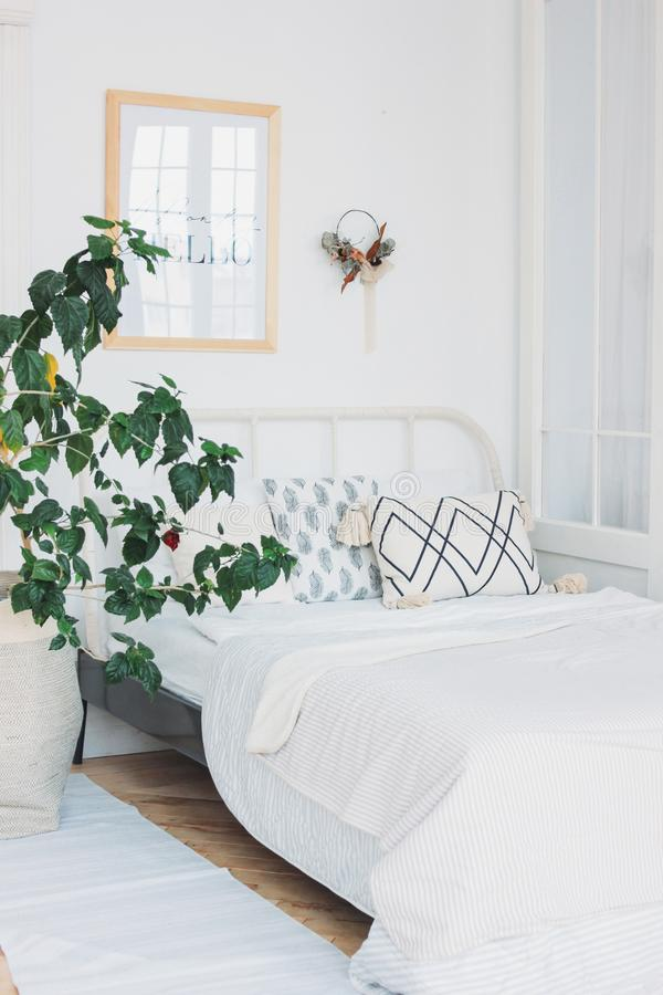Scandinavian modern cozy eco white interior in bedroom, big green house plant, minimalism. The Scandinavian modern cozy eco white interior in bedroom, big green stock photo