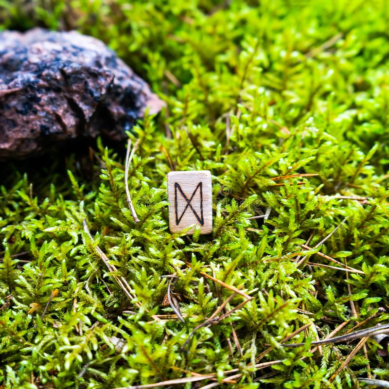 Scandinavian rune Dagaz, denoting a gift, on wet moss. The concept of predicting the future, an ancient way of divination royalty free stock photography