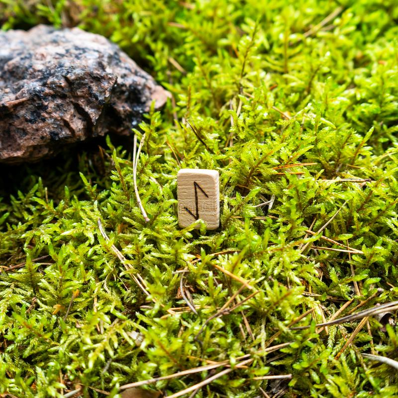 Scandinavian rune Eyvaz messenger, on wet moss. The concept of predicting the future, an ancient way of divination royalty free stock photography