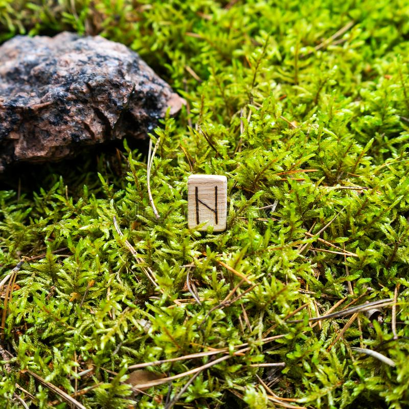Scandinavian rune Hagal destruction, on wet moss. The concept of predicting the future, an ancient way of divination stock photo