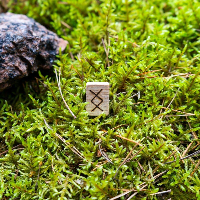 Scandinavian rune Inguz abundance, on wet moss. The concept of predicting the future, an ancient way of divination stock photo