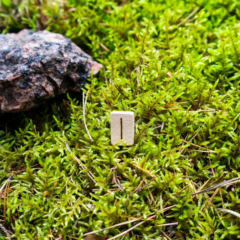 Scandinavian rune Isa ice, on wet moss. The concept of predicting the future, an ancient way of divination royalty free stock images