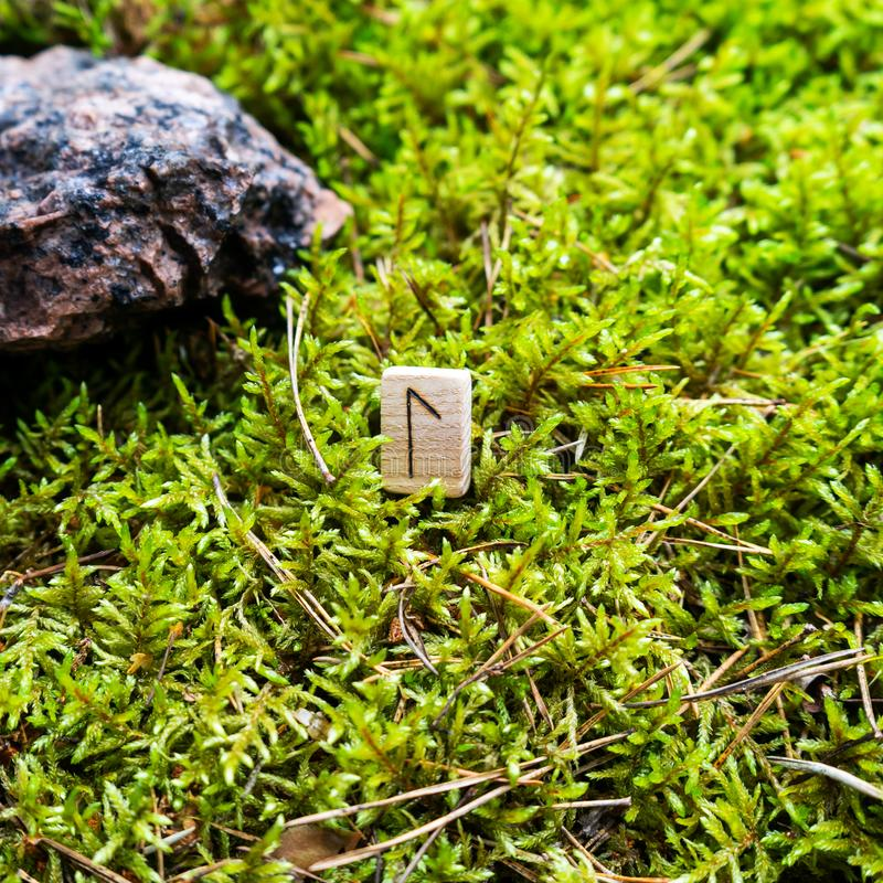 Scandinavian rune Laguz intuition, on wet moss. The concept of predicting the future, an ancient way of divination stock photos