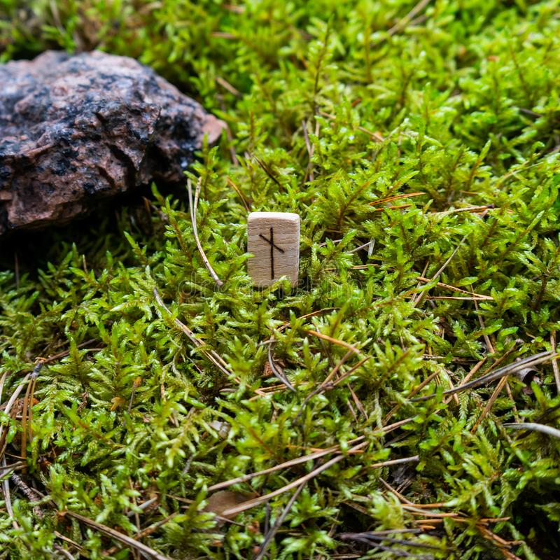 Scandinavian rune Nauthiz need, on wet moss. The concept of predicting the future, an ancient way of divination stock photo