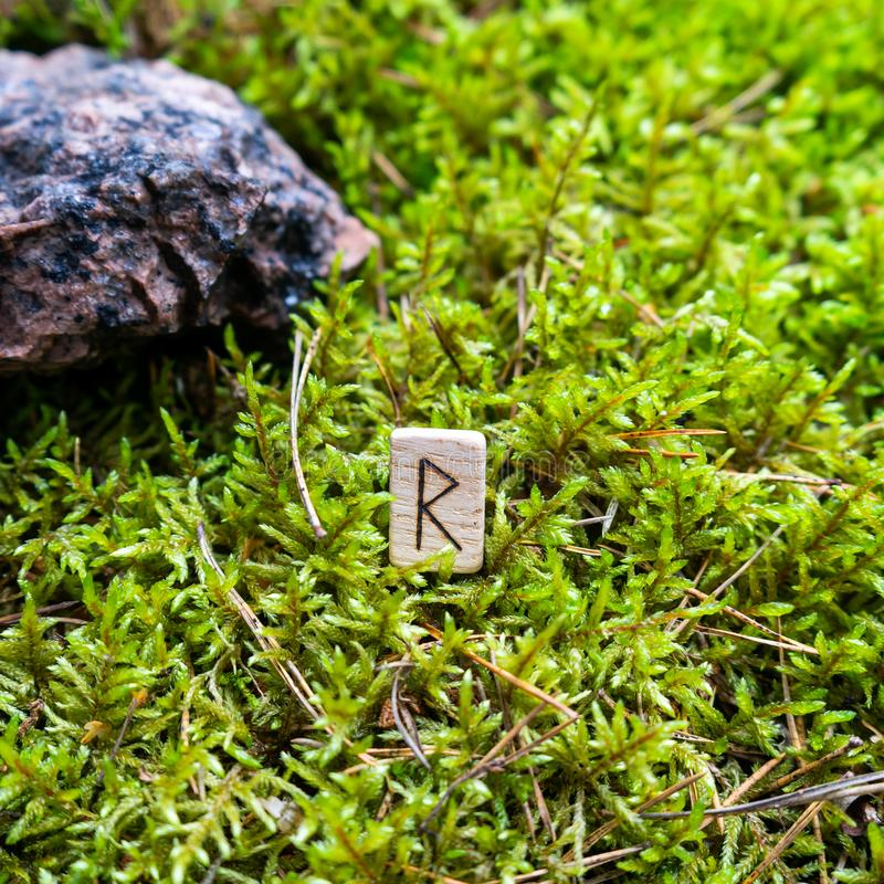 Scandinavian rune Raido, harbinger of travel, on wet moss. The concept of predicting the future, an ancient way of divination stock image