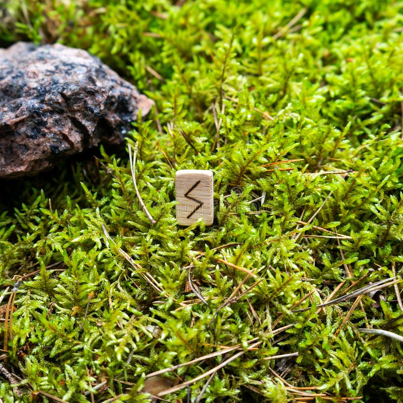 Scandinavian rune Sowilo light, sun, on wet moss. The concept of predicting the future, an ancient way of divination royalty free stock photo
