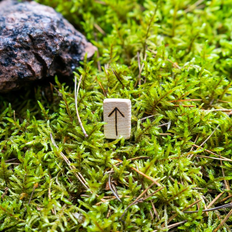Scandinavian rune Teyvaz victory, on wet moss. The concept of predicting the future, an ancient way of divination royalty free stock photos