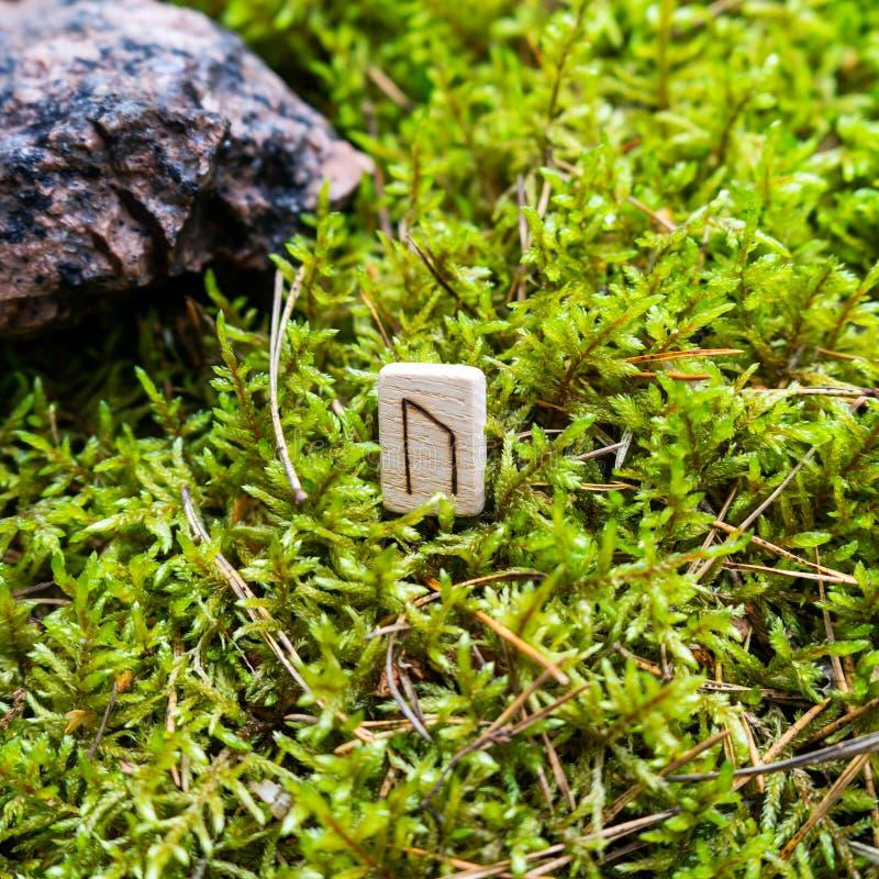 Scandinavian rune Uruz strength, health, on wet moss. stock images