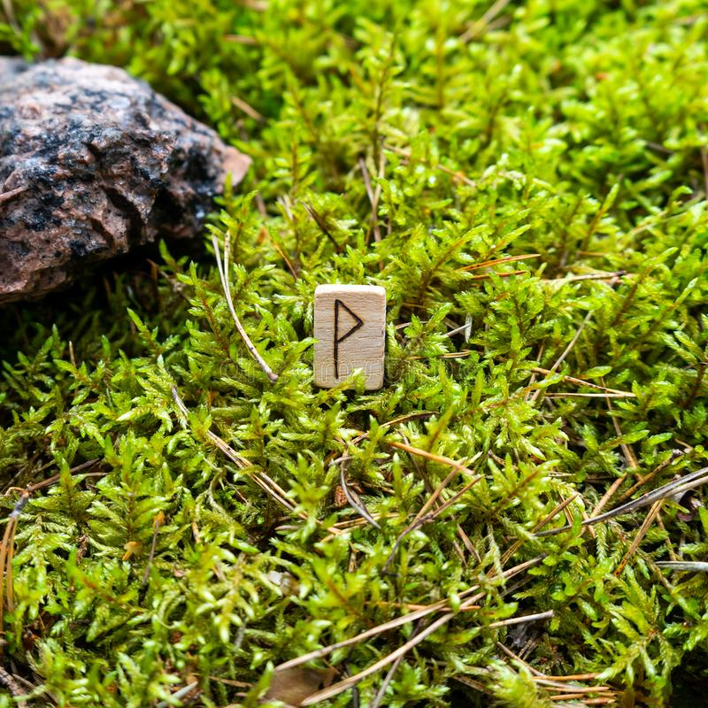 Scandinavian rune Wunjo joy, on wet moss. The concept of predicting the future, an ancient way of divination royalty free stock image