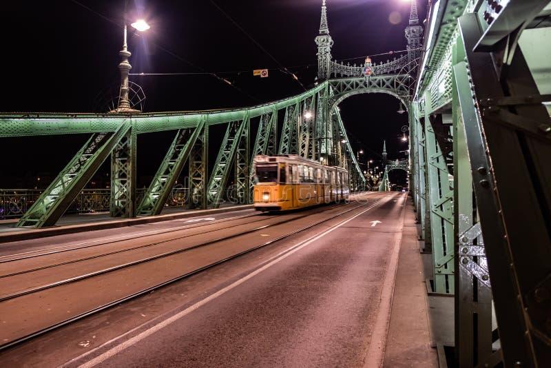Scape cênico da noite da ponte de Budapest Danube River e de liberdade no luminoso Natureza, arquitetura da cidade imagem de stock