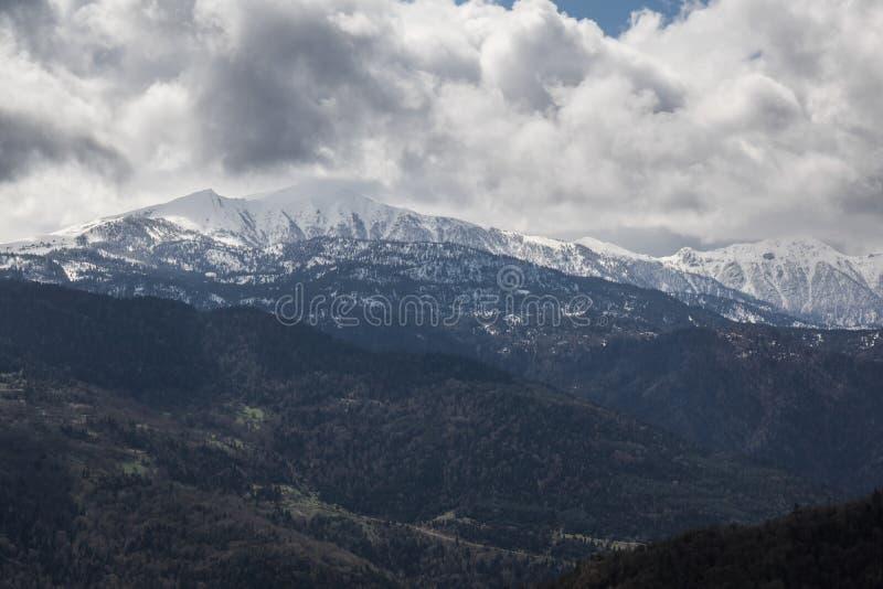 Scape de montagne en parc national de borjomi photo stock