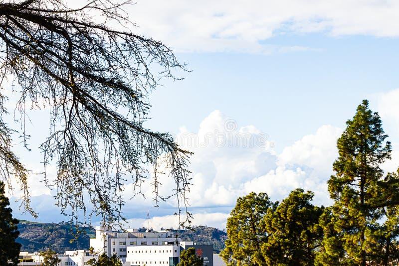 Scape della città con gli alberi sempreverdi e disiduous con le colline ed il cielo blu nuvoloso fotografie stock