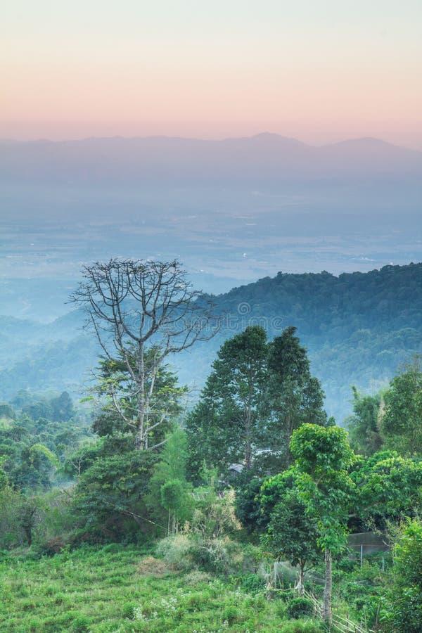 Scape Tailandia della terra immagini stock libere da diritti