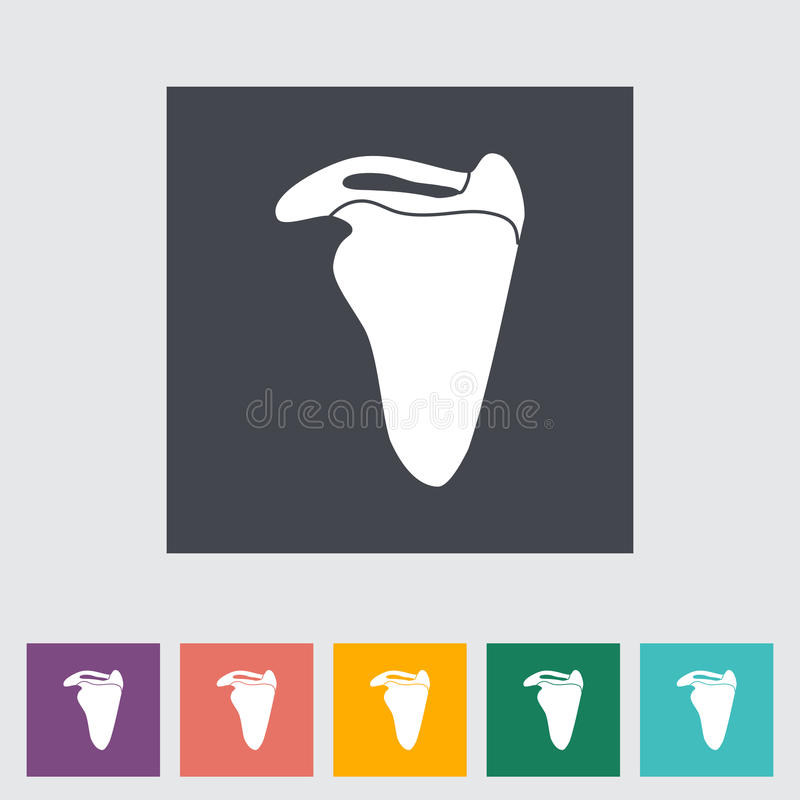 Scapula. Flat icon. Vector illustration stock illustration