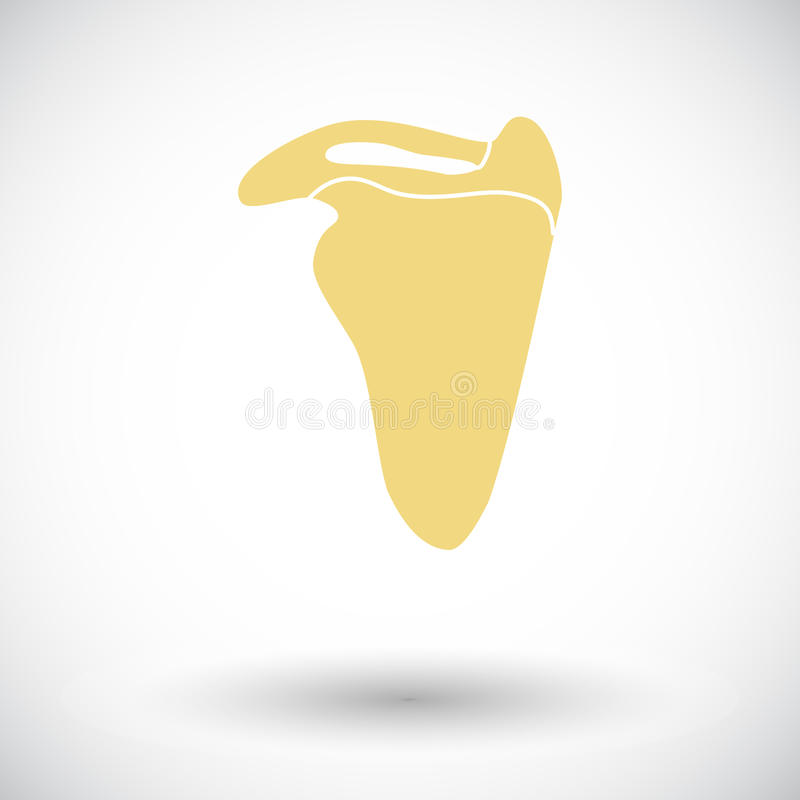 Scapula. Single flat icon on white background. Vector illustration royalty free illustration