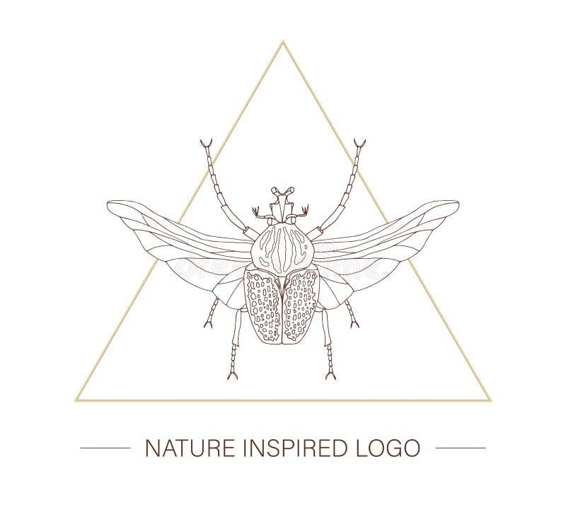 Scarabée tropical tiré par la main de Goliath de vecteur avec des ailes dans une triangle illustration de vecteur