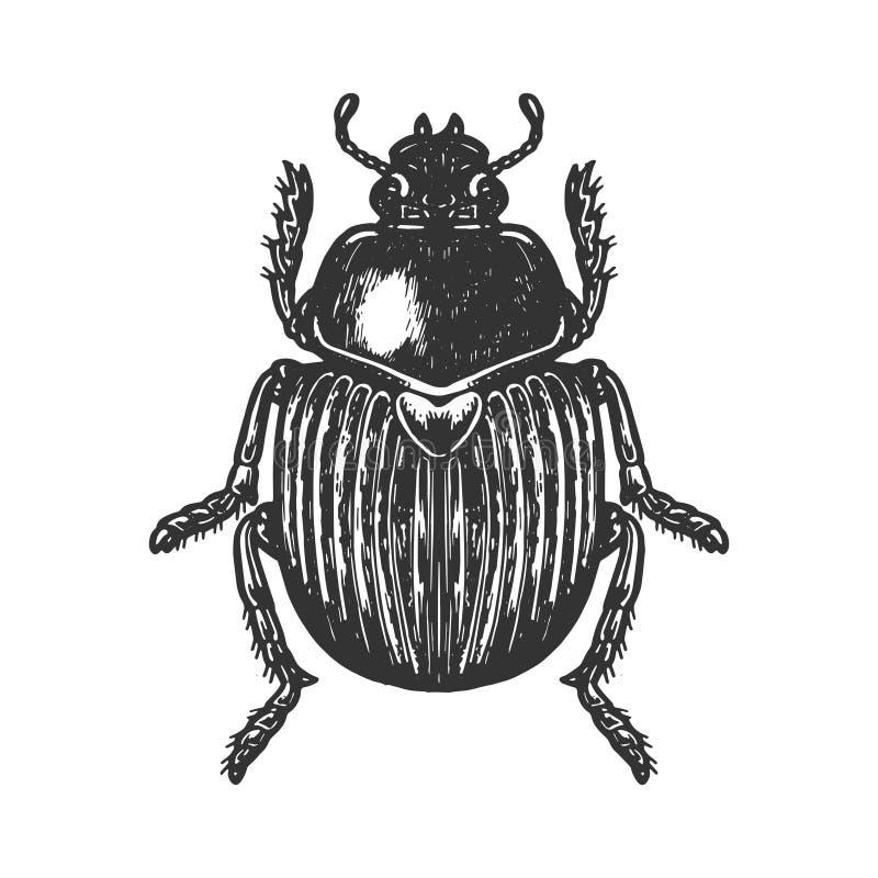 Free Scarab Beetle Engraving Vector Illustration Stock Image - 132623601