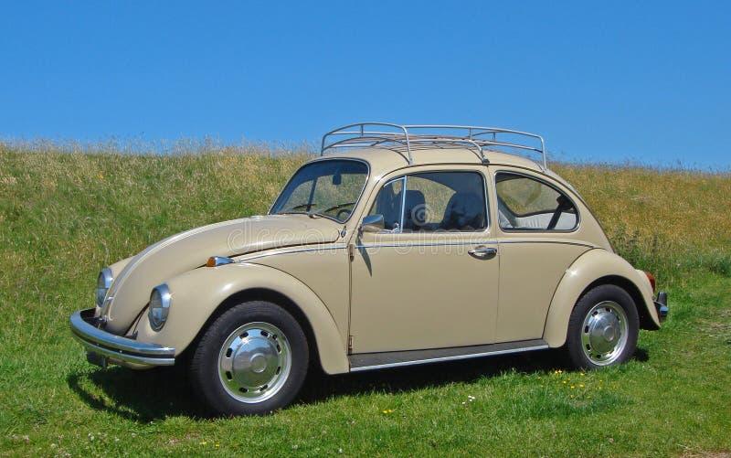 Scarabeo di Volkswagen fotografia stock